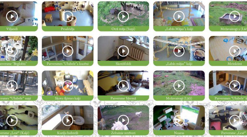 AnimalsLife.Net web kameras