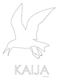 kaija_siul