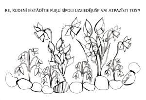 pavasaris-Lielienas-A_Rudzite (10)
