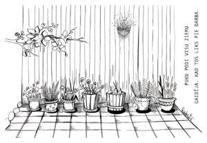 pavasaris-Lielienas-A_Rudzite (11)