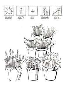 pavasaris-Lielienas-A_Rudzite (6)